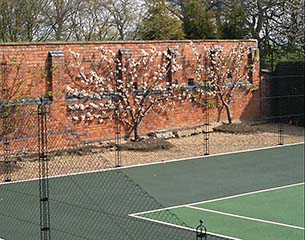 AMSS - Tennis Court Construction - Victorian brick wall with obelisk tennis court fencing by AMSS